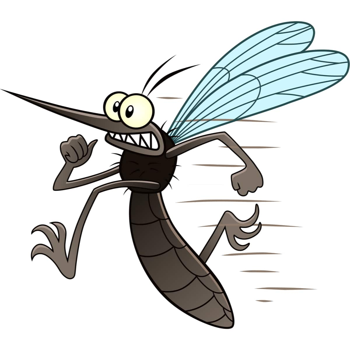 répulsifs naturels pour les Moustiques