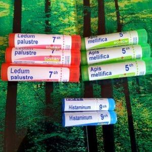 traitement homeopathique répulsifs moustiques