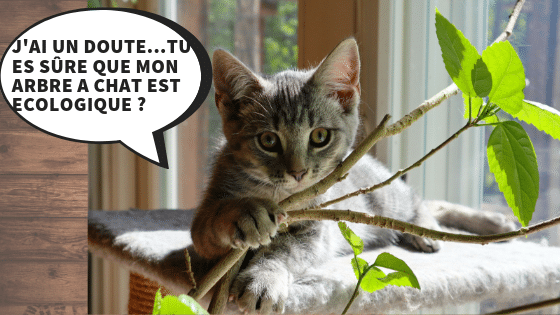UN ARBRE A CHAT ECOLOGIQUE ET DESIGN –