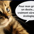 chat griffoir ecologique