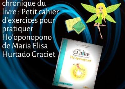 Petit cahier d'exercices pour pratiquer Ho'oponopono de Maria Elisa Hurtado Graciet