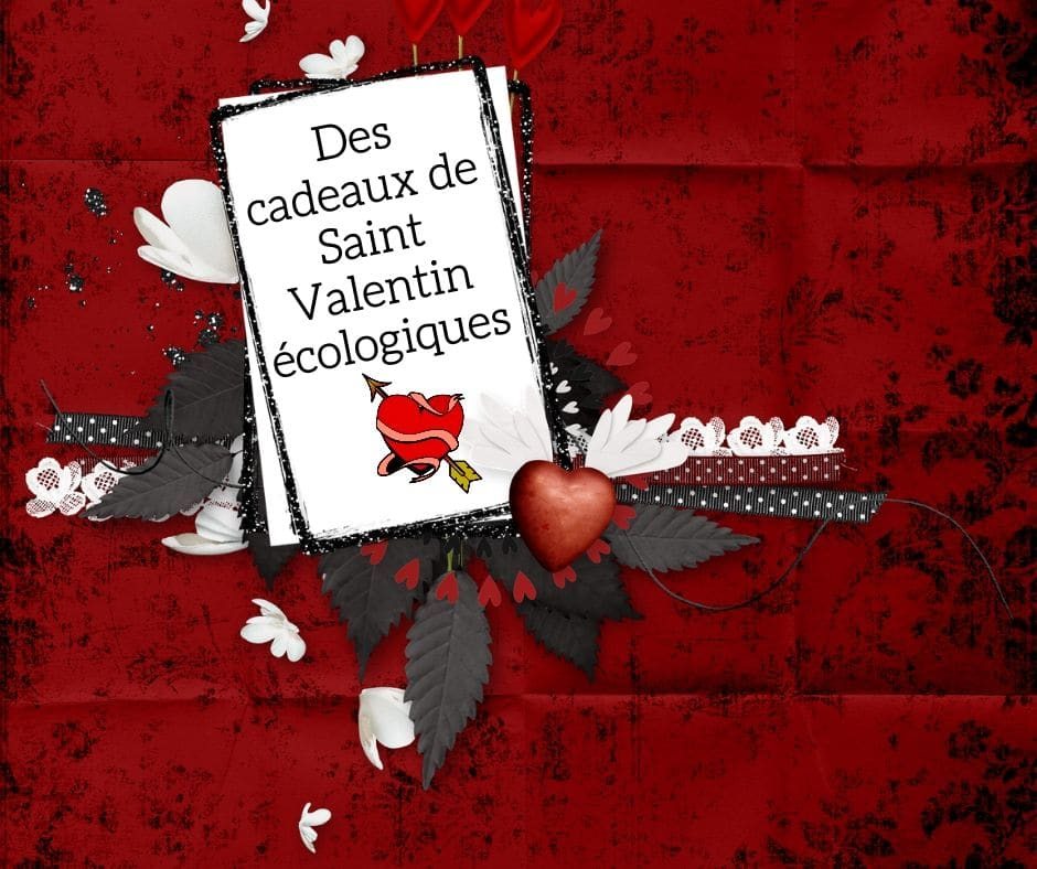 Cadeaux de Saint Valentin écologiques