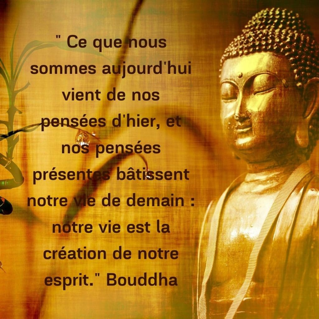 loi d'attraction - citation de bouddha
