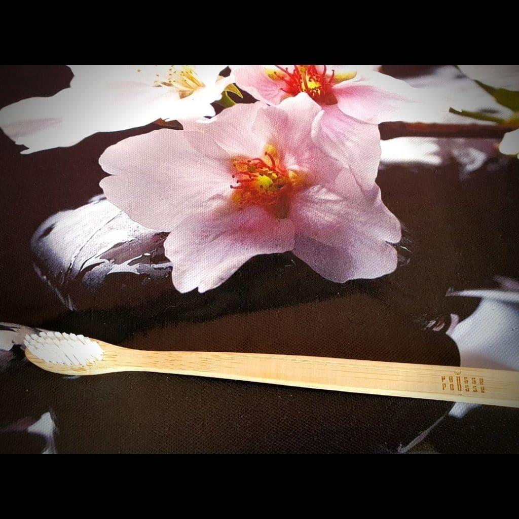 brosse à dents en Bambou de pousse pousse