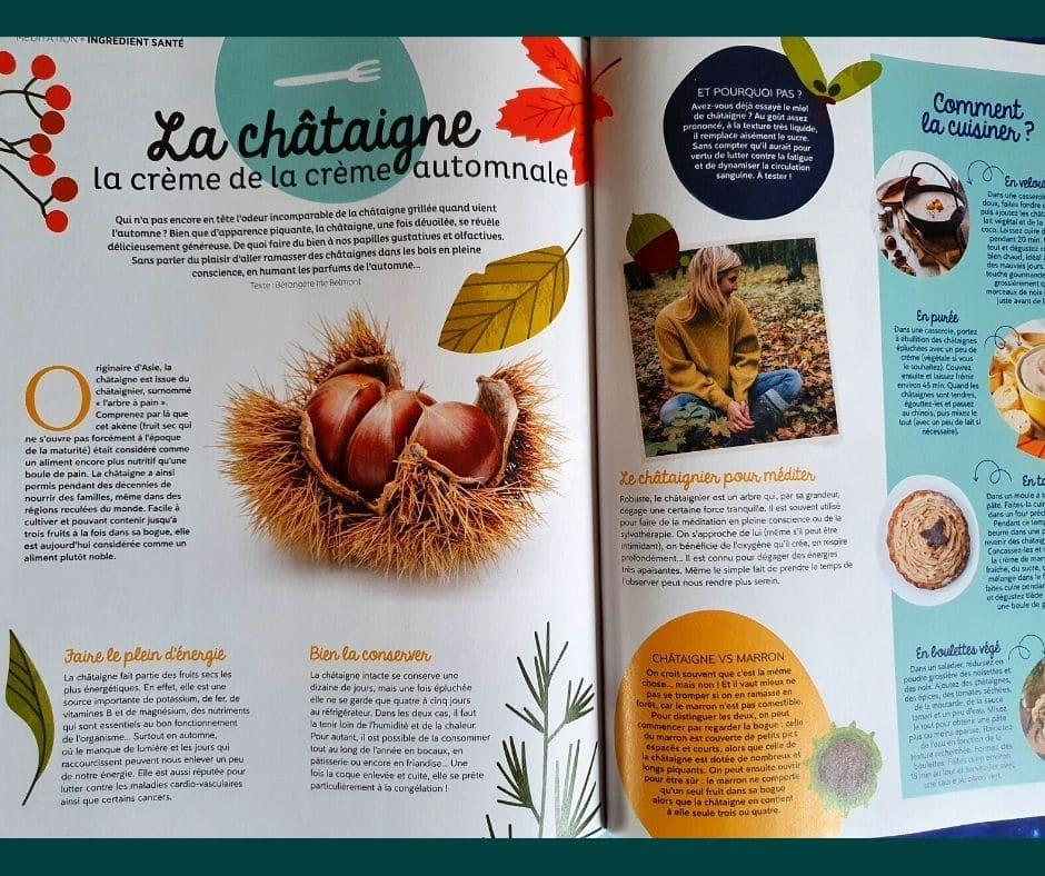 --- magazine méditation N°6 -