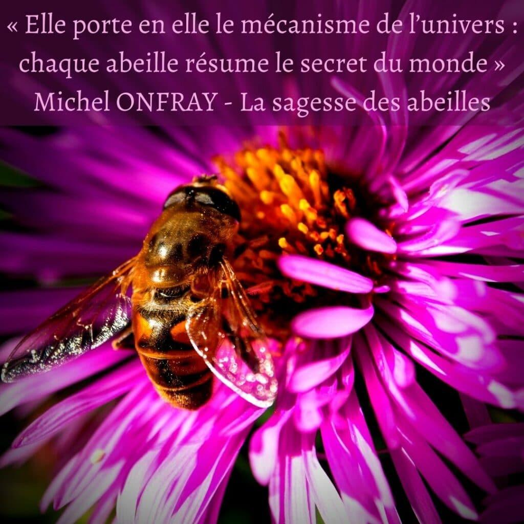 citation abeilles